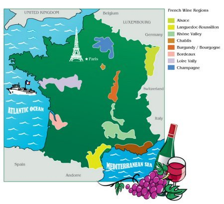 french wine industry An examination of the strategy report for the french wine industry produced by franceagrimer.